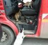 Un giro in ambulanza