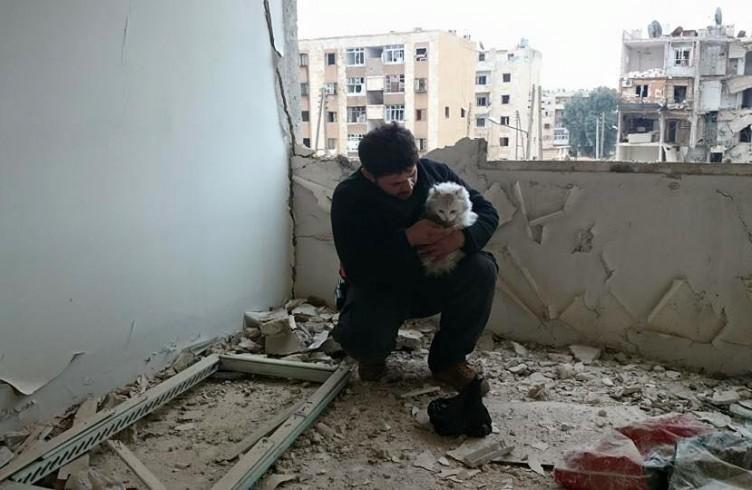 Alaa recupera una gatta rimasta sola nell'appartamento bombardato