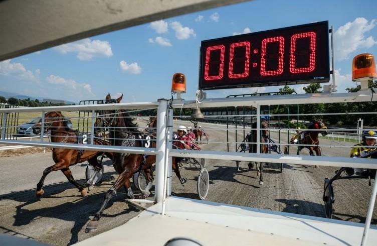 23 Visarno, i cavalli allineati dietro la macchina dello starter